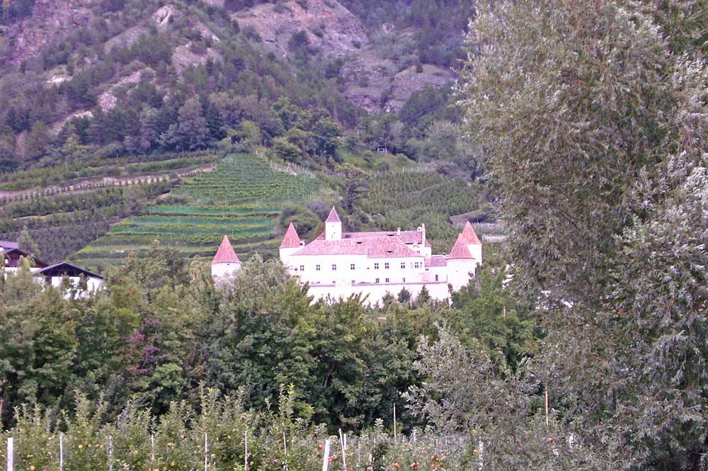 Blick auf Schloss Goldrain