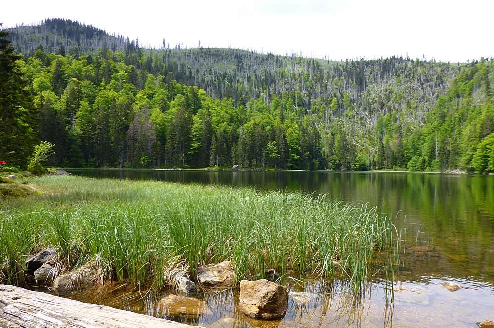 Blick über den Rachelsee mit dem Großen Rachel im Hintergrund