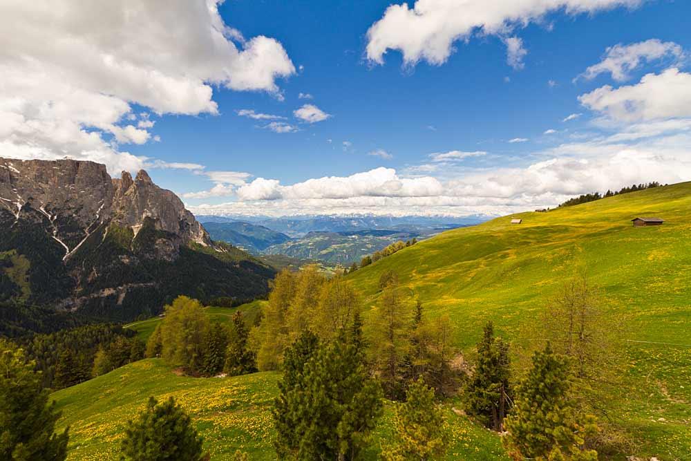 Blick auf die blühenden Wiesen und die umliegende Bergwelt der Seiser Alm