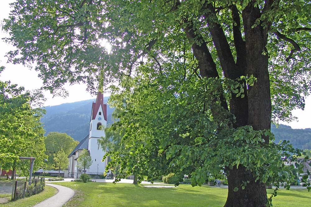 Blick auf die Linde und die Pfarrkirche St. Ottilie am Dorfplatz in Amlach