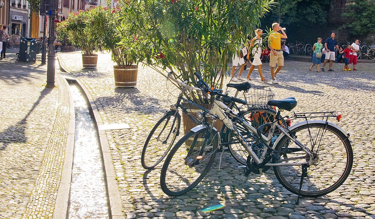 Aufgepasst: Die Bächle durchziehen die Freiburger Innenstadt © FWTM/Schoenen