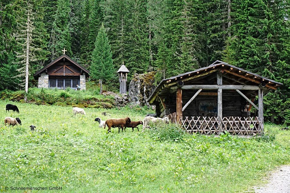 Instein-Kapelle mit vielen Schafen