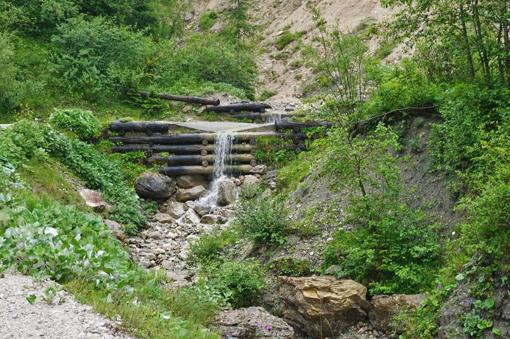 Hier fließt entlang des Wanderweges ein kleiner Bach durch den Wald