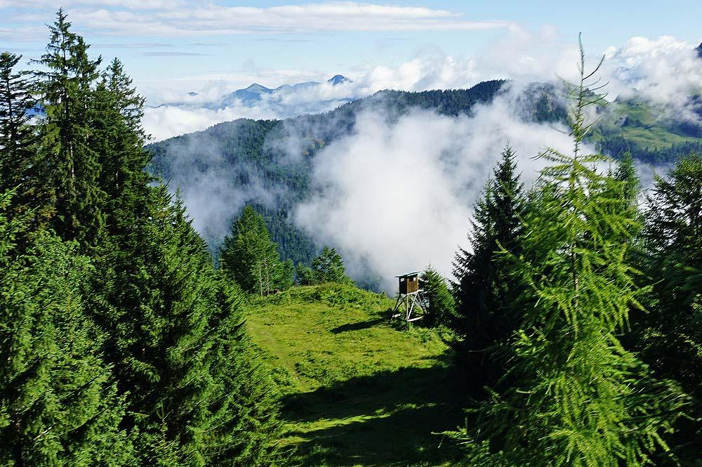 Aussicht auf Hochsitz während der Fahrt mit dem Kaiserlift zur Bergstation