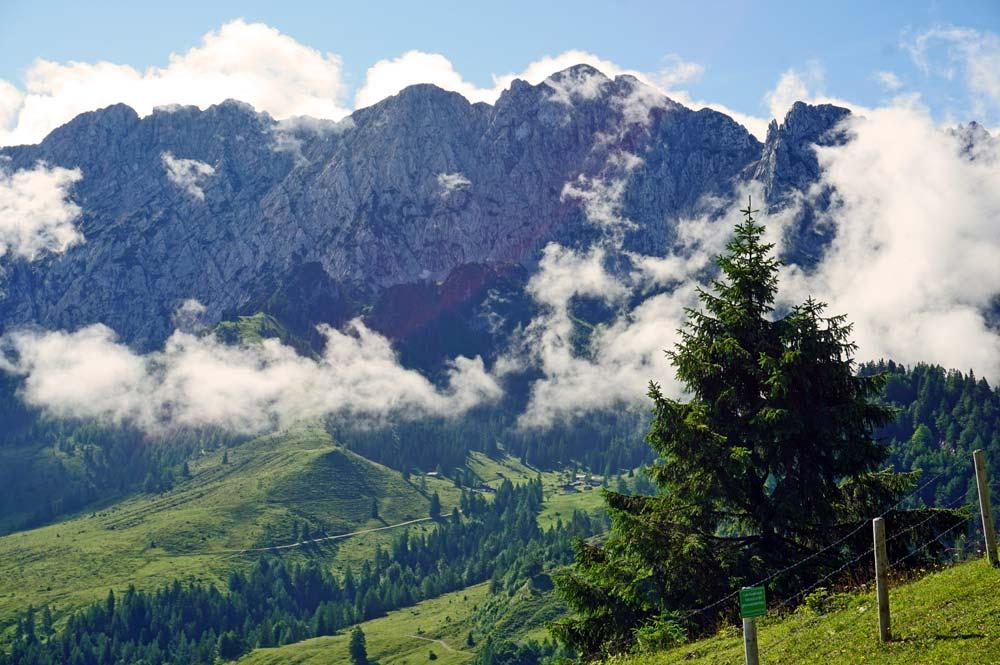 Aussicht auf das Kaisergebirge während unserer Themenwanderung