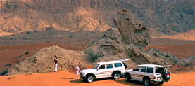 Desert Safaris