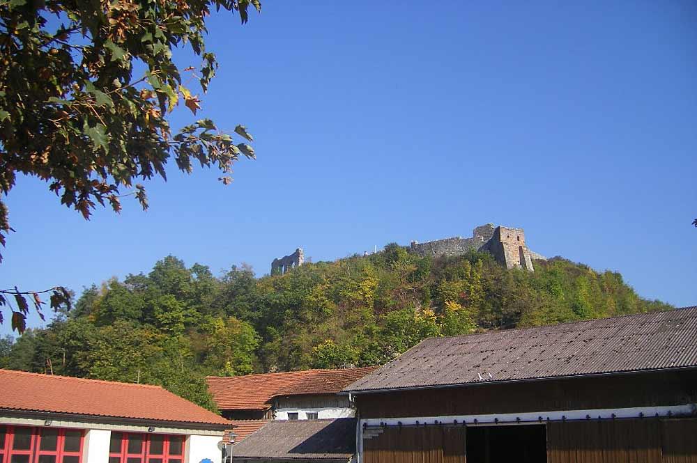 Blick auf den Schlossberg und die Burgruine von Winzer