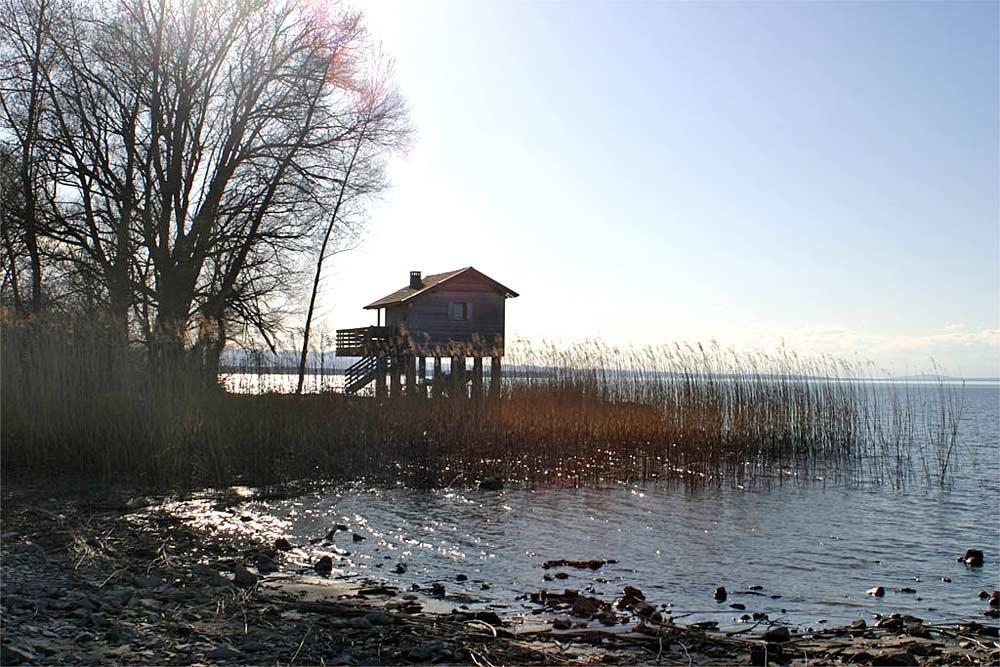 Hütte am Rohrspitz bei Fußach im Naturschutzgebiet Rheindelta