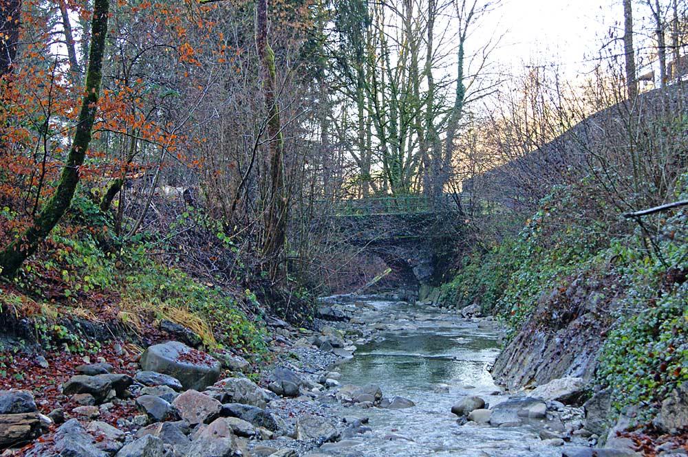 Mühltobelbach in Röthis
