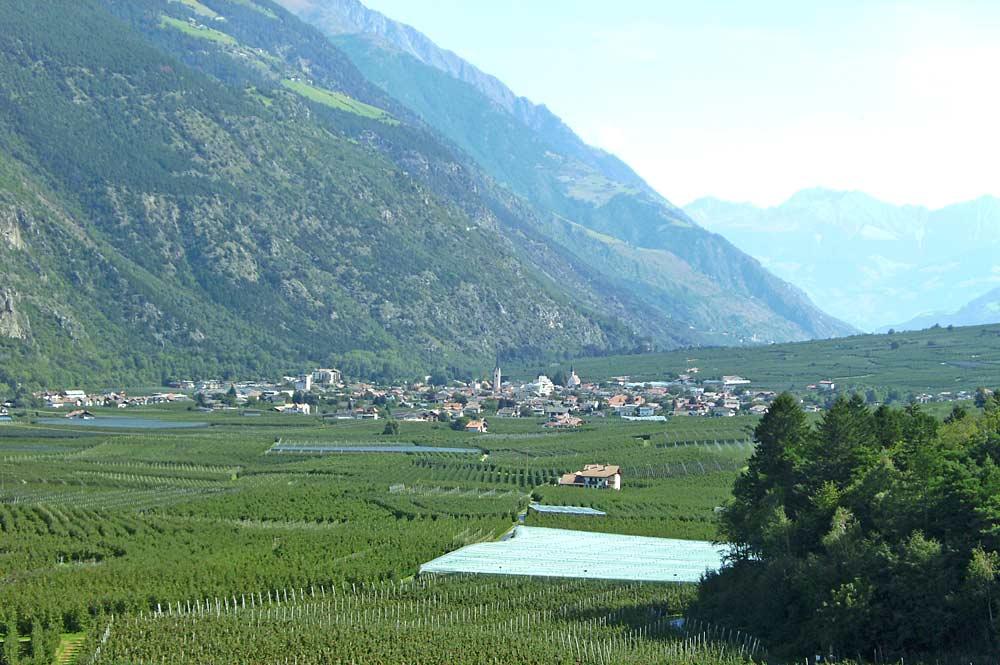 Ortsansicht von Latsch im Vinschgau