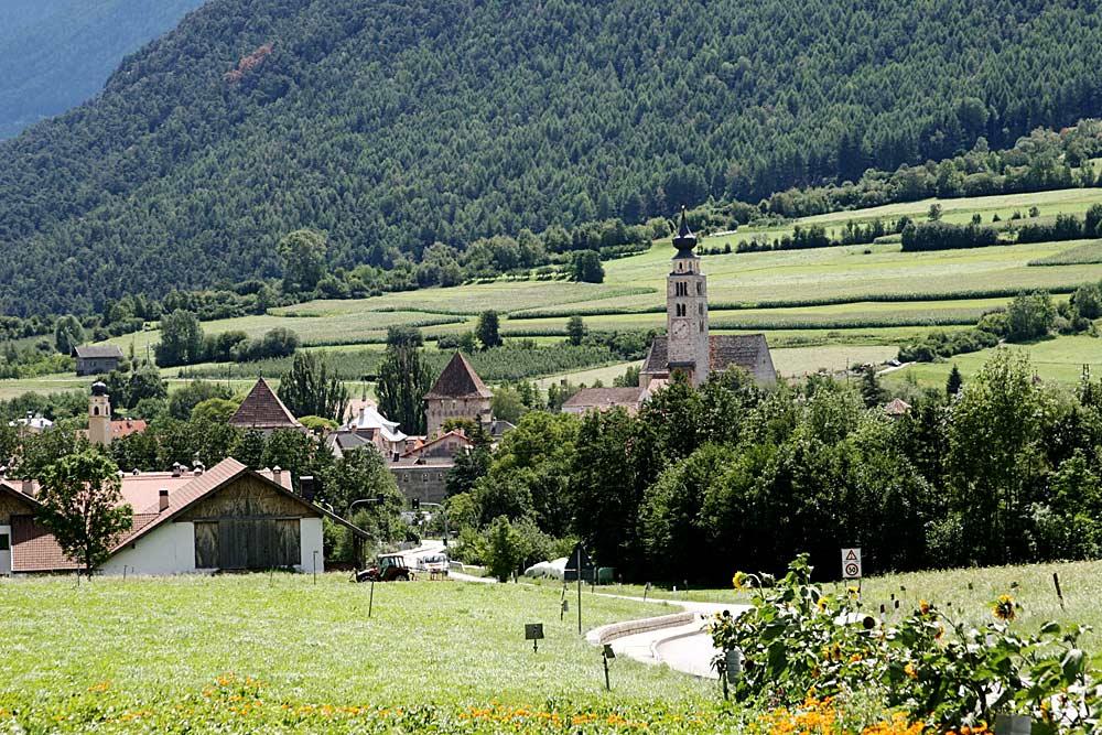 Blick auf Glurns in Südtirol