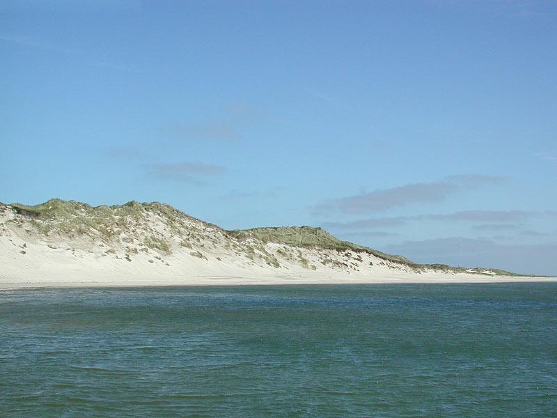 Blick auf die Dünenküste bei Hörnum auf Sylt
