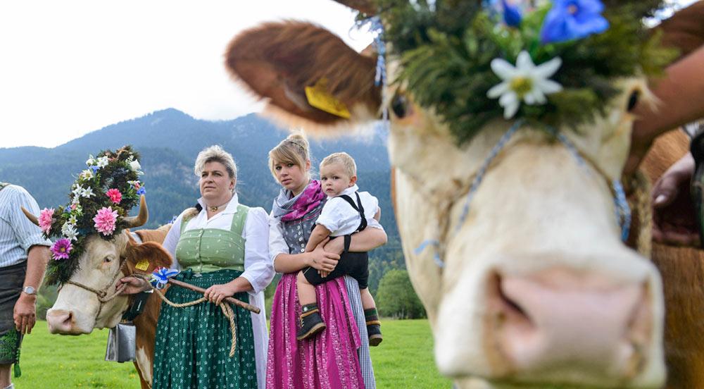 Die Bauernwochen in der Alpenwelt Karwendel