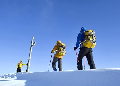 Bernd Ritschel und sein Team beim Skitransalp. Drei Skiwanderer von hinten auf einem Scheefeld