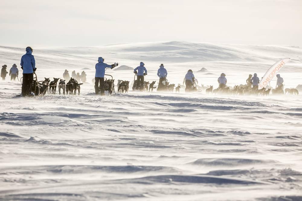 Hundeschlitten mit Mushern beim Fjällräven Polar in Nordskandinavien