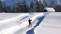 Langläufer auf der Panoramaloipe Alpenwelt Karwendel