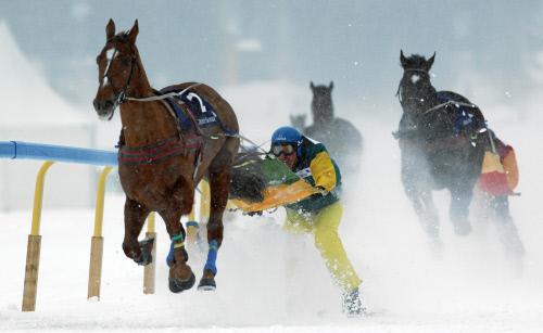 Skijöring-Rennen beim White Turf in St. Moritz