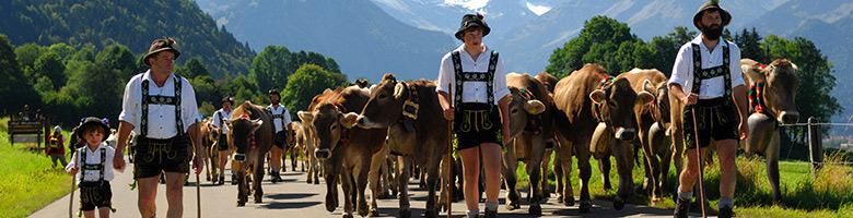 Senner beim Viehscheid in Oberstdorf