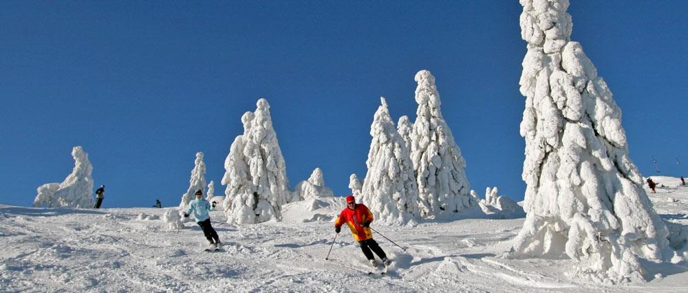 Skifahrer am Osthang des großen Arbers