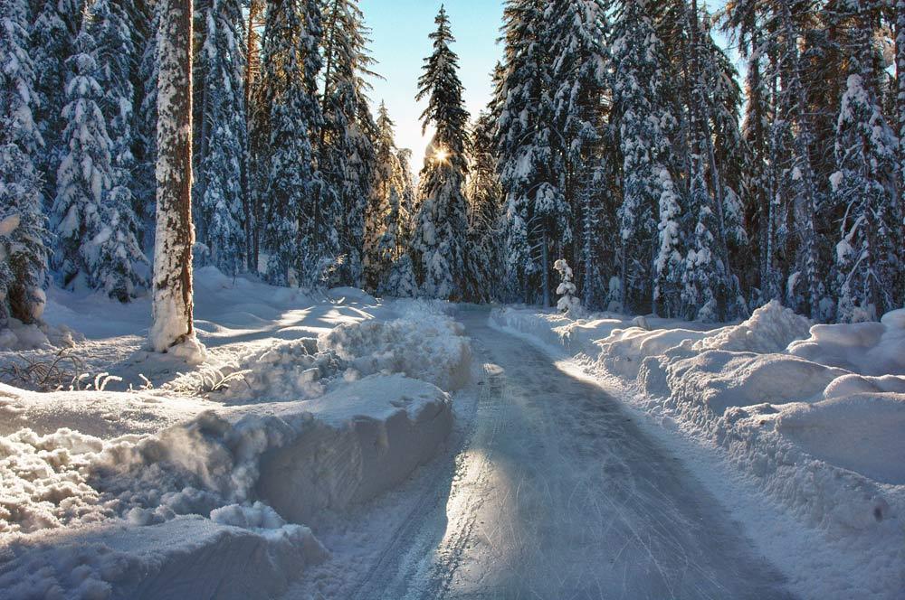 Der Eisweg führt durch die verschneite Naturlandschaft des Engadin