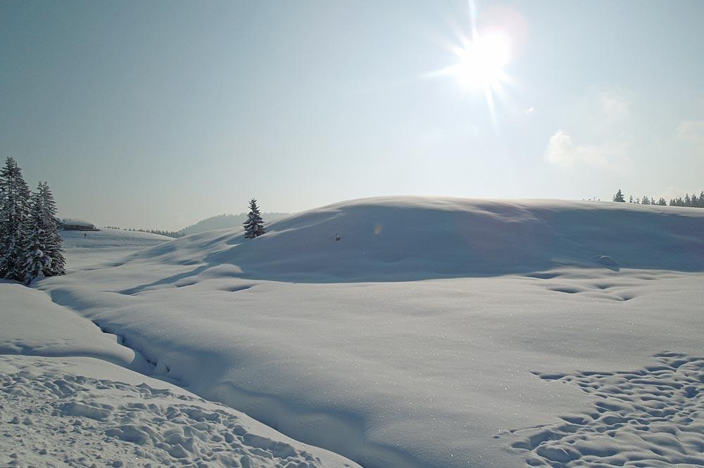 Winterlandschaft auf der Winklmoosalm