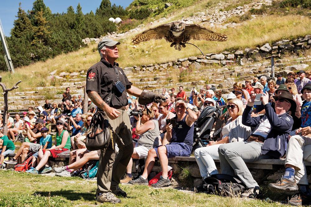 Flugshow mit Zuschauer