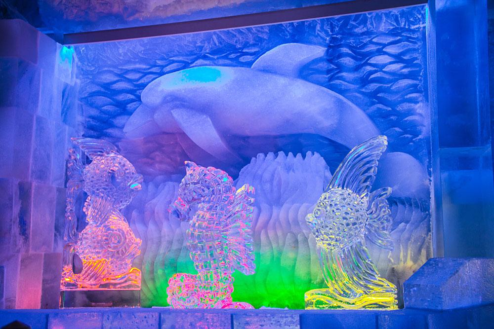 Unterwasserwelt aus Eis