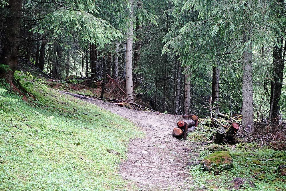 Der schwarze Singletrail in Kals wird mit natürlichen Hindernissen gebaut