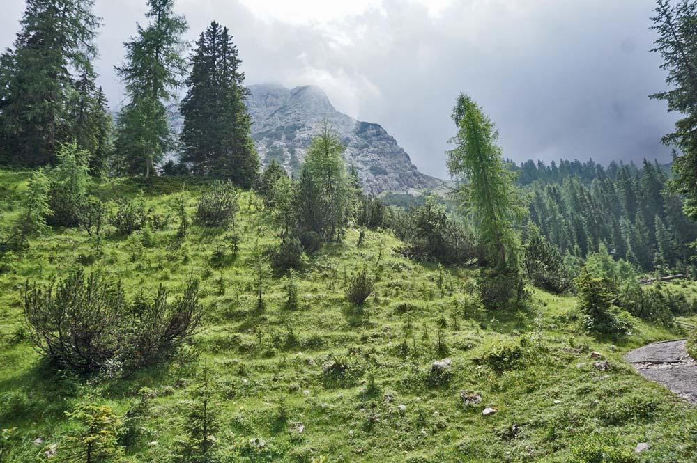 Der Wanderweg verläuft vorm Mieminger Gebirge, vorbei am Tajakopf