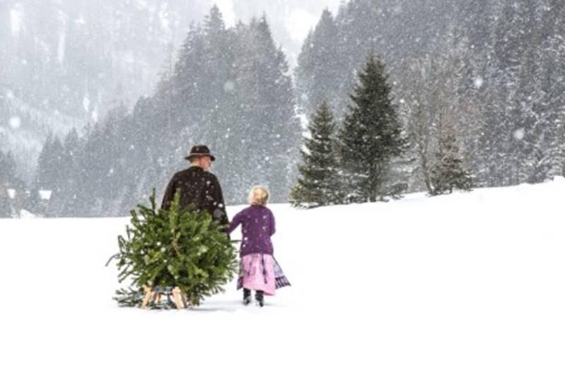 Großvater mit Enkel in Gastein mit Tannenbaum