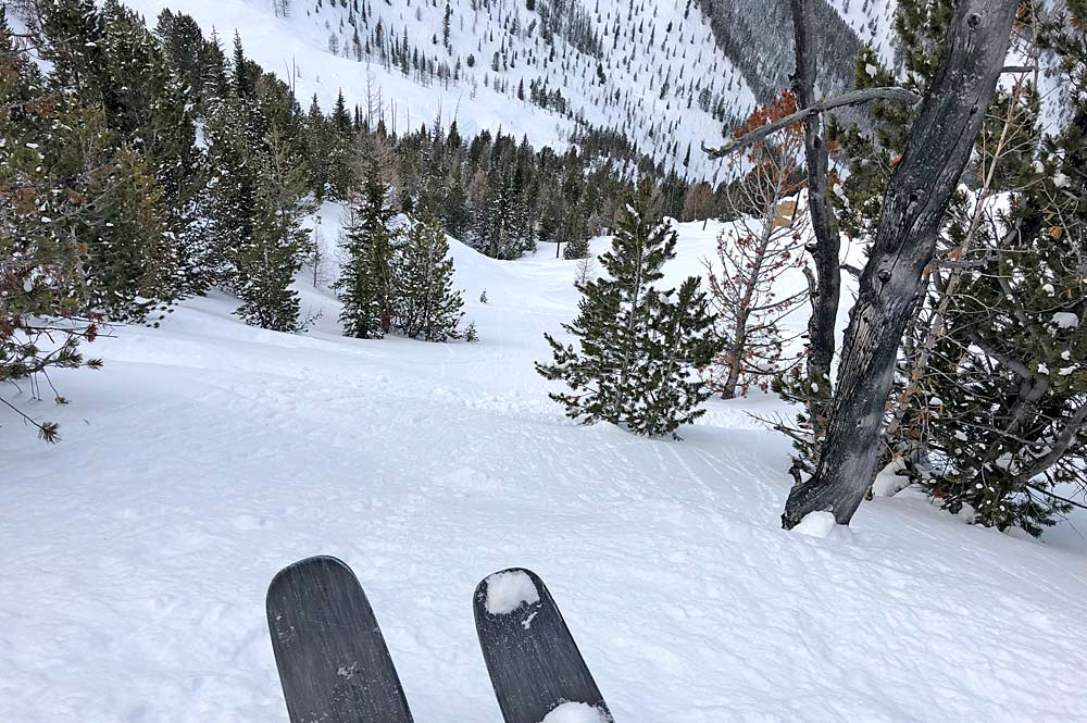 Champagne Powder in der Taynton Bowl