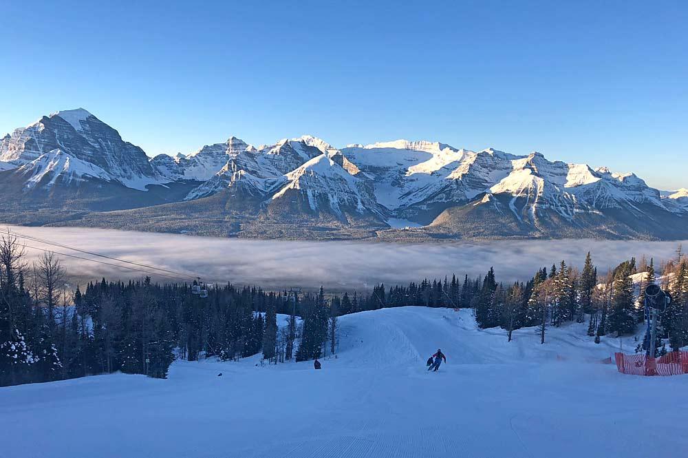 Skifahrer auf einem Treerun in Lake Louise
