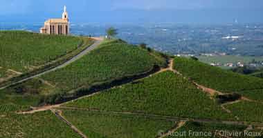 Blick auf das Weinbaugebiet von Beaujolais