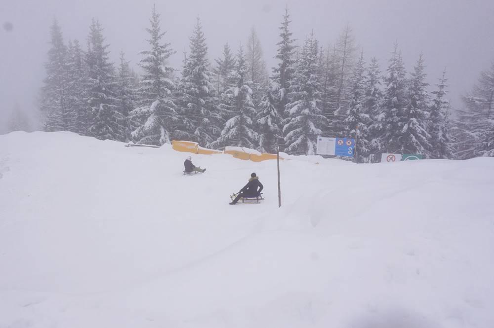 Rodler beim Bremsen und Lenken auf der Rosskopf-Rodelbahn