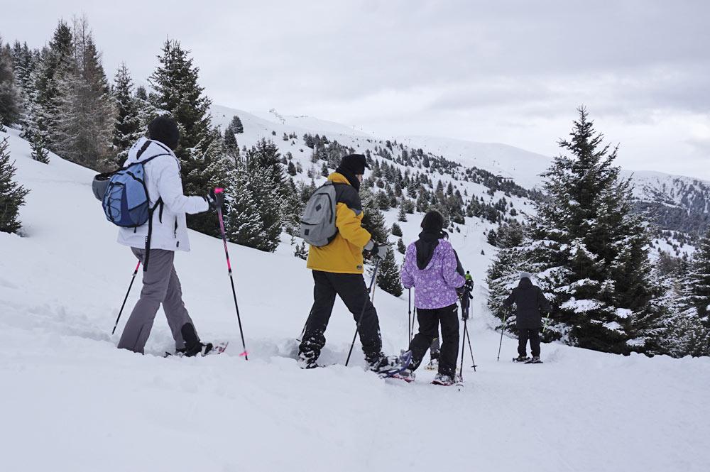 Mit den auffallenden Leki Skitourenstöcken bei einer Schneeschuhwanderung auf der Plose