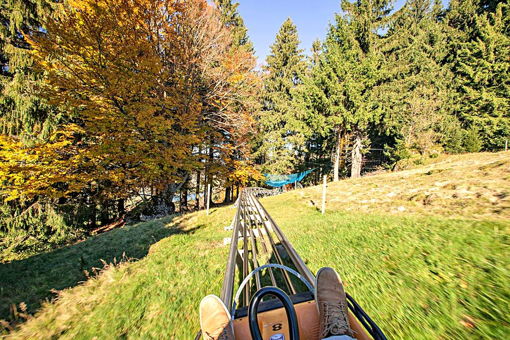 Alpsee Coaster im Herbst