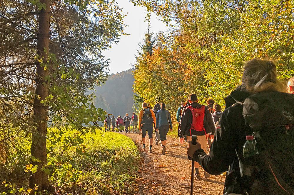 Wanderer in der Fuschlseeregion