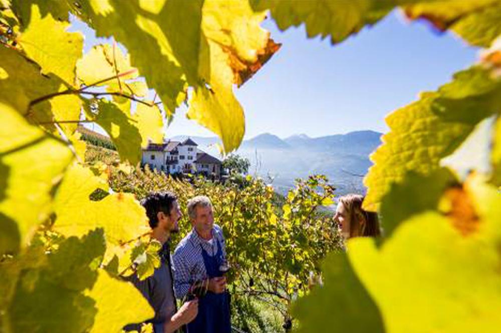 Bauern zwischen den Weinreben