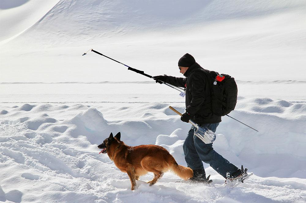 Ein Lawinenhund und sein Hundeführer im Schnee