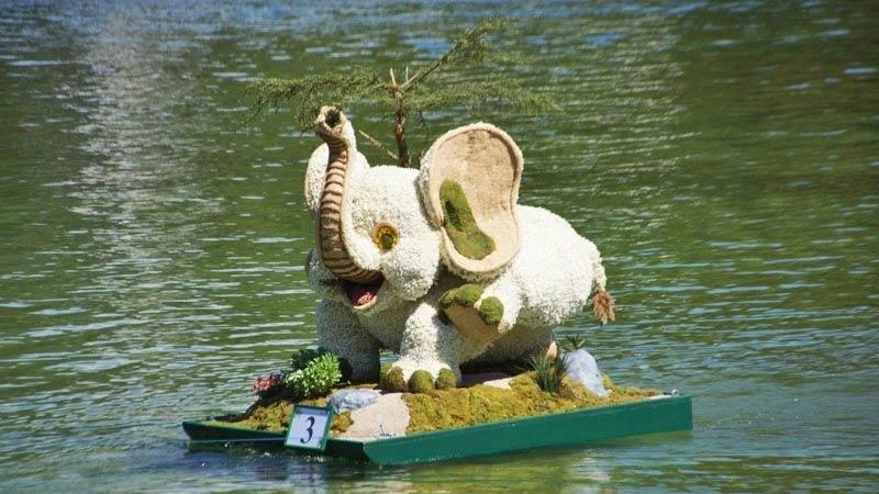 Elefant aus Narzissenblüten beim Bootskorso des Narzissenfests im Ausseerland