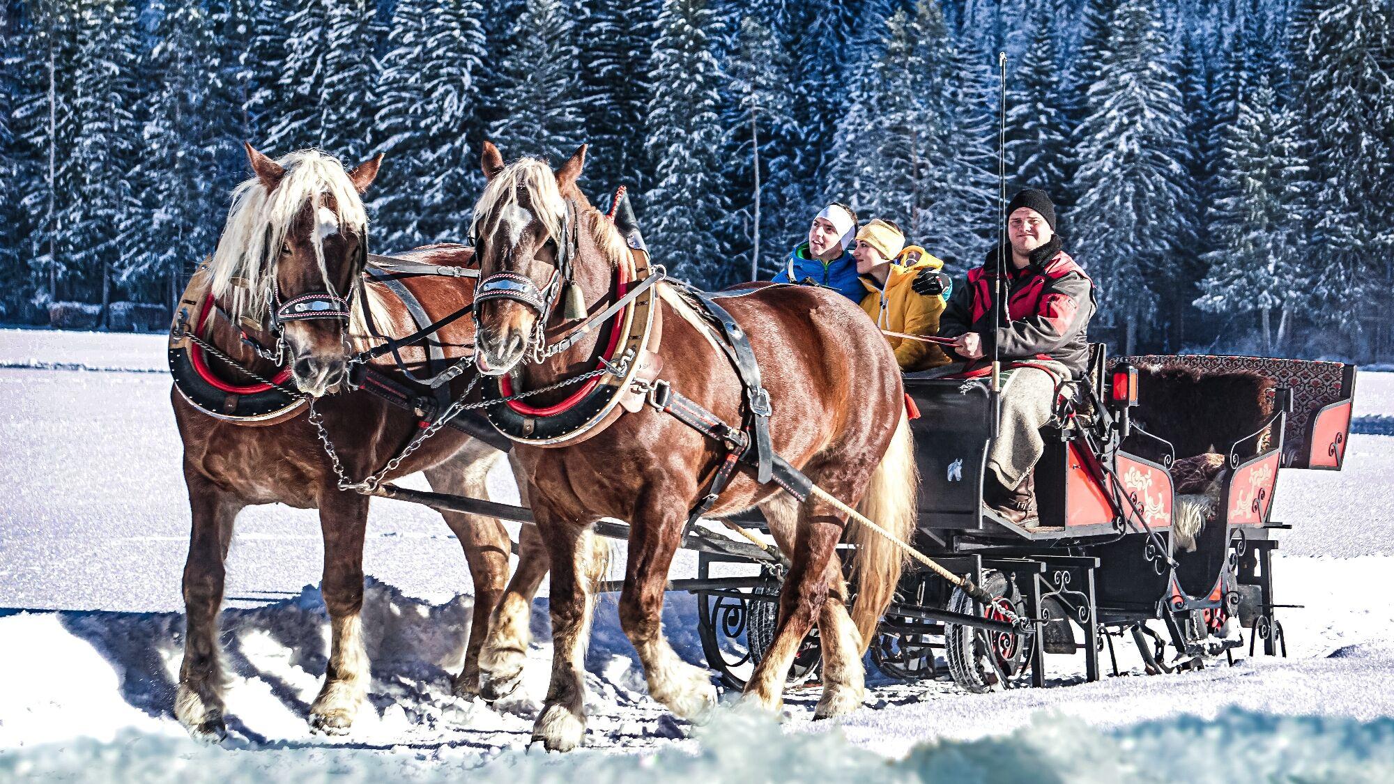 Kutschfahren in Holzgau