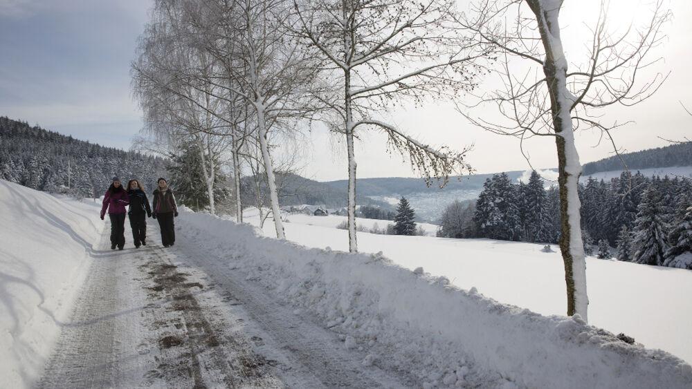 Rund um Baiersbronn warten 29 abwechslungsreiche Winterwander- und Schneeschuhtouren.