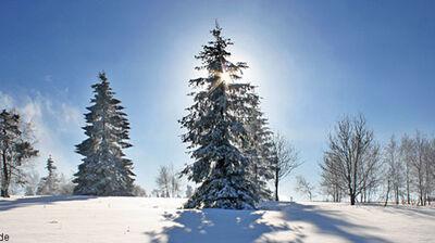 Rhön Schneelage
