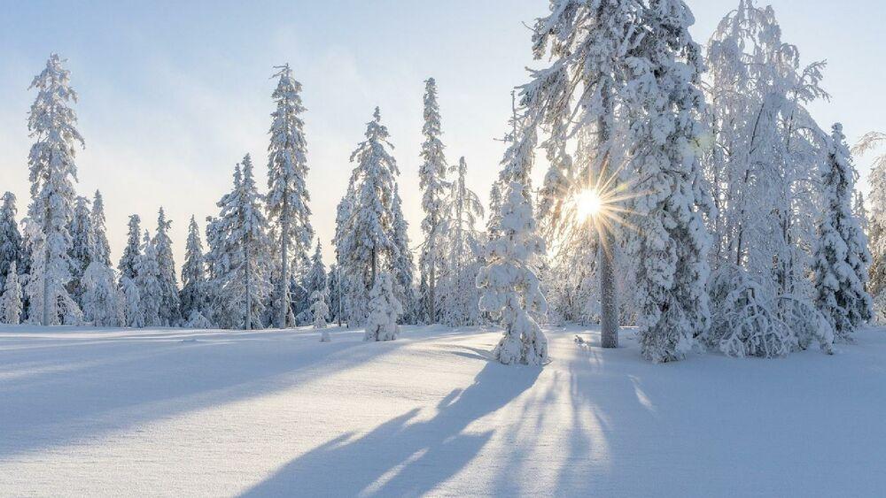 Winterlandschaft an der Maria Alm im Salzburger Land