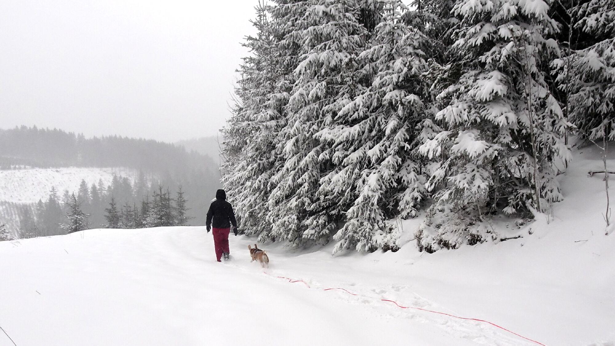 Aktuell Massen an Schnee im Sauerland - hier in Neuastenberg bei Winterberg