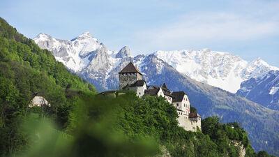 Aussicht auf das Schloss Vaduz