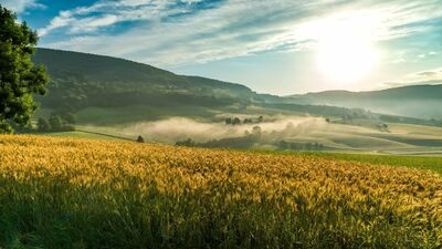Schluchtensteig Schwarzwald