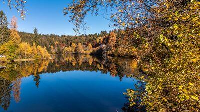 Schluchtensteig Schwarzwald ETappe 5