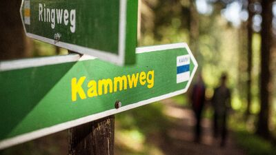 Unterwegs auf dem Qualitätswanderweg Kammweg