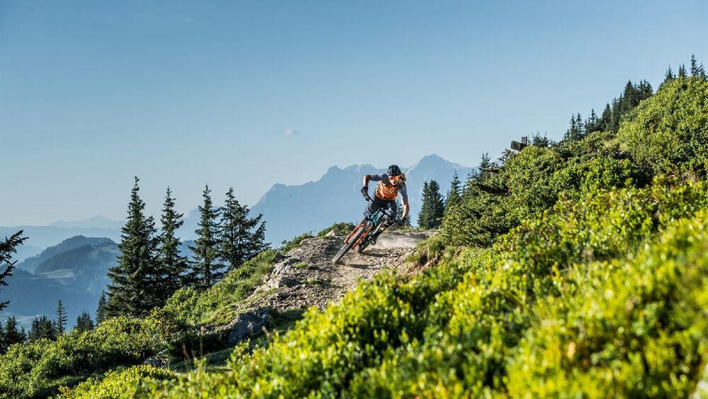 Natur pur beim Biken in Saalbach